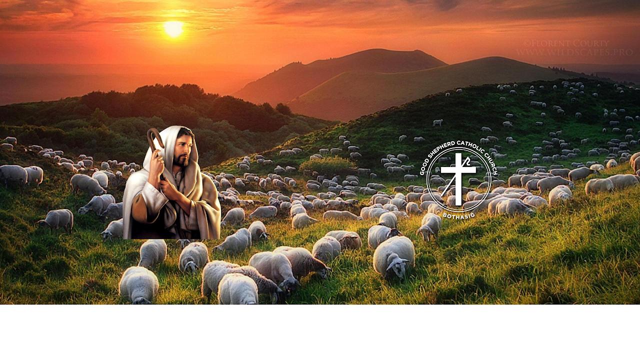 The Good Shepherd Stream