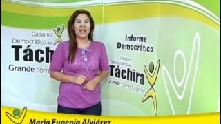 Pérez vivas, Táchira Solidario en municipios de montaña (Informe Democrático)