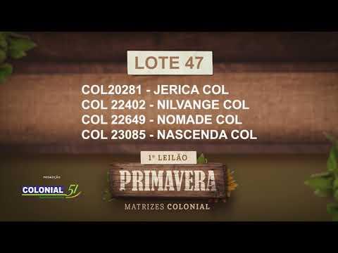 LOTE 47   COL 22402,22649,20281,23085