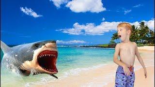 Baby Shark Song for Kids Funny Baby Shark Educational Video for Children Nursery Rhymes