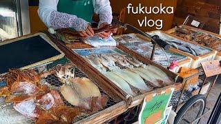 아침에 일본 수산물시장…