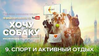 9. ХОЧУ СОБАКУ: спорт и активный отдых с собакой