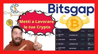kereskedő con bitcoin