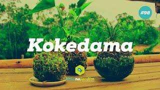 Como Fazer E Cuidar Do Kokedama