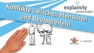 Konflikte zwischen Menschen und Beutegreifern einfach erklärt (explainity® Erklärvideo)