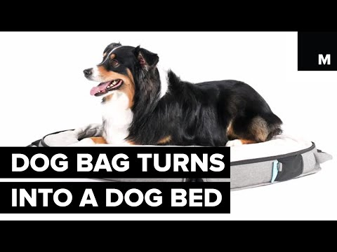 This Dog Bed Doubles As A Luggage Pouch For Your Pooch
