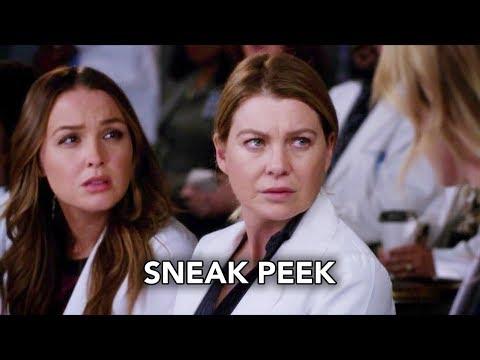 Grey's Anatomy 14x20 Sneak Peek
