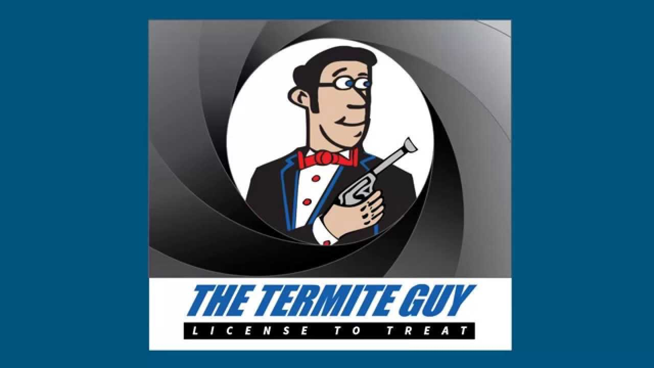 Fumigation Preparation presented by The Termite Guy  sc 1 st  YouTube & Fumigation Preparation presented by The Termite Guy - YouTube