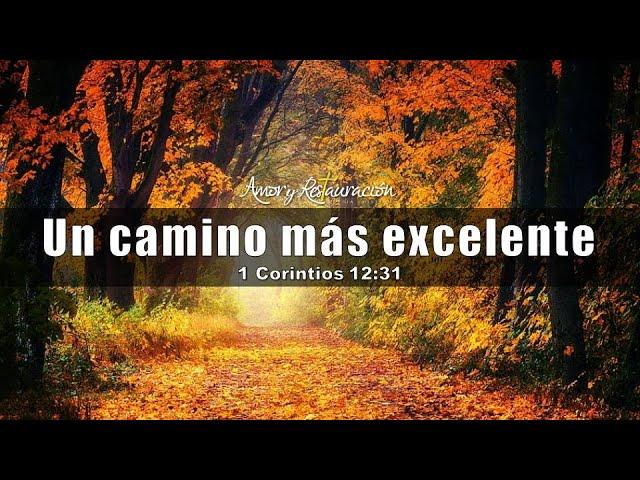 El amor: un camino más excelente (1 de Corintios 12:31)