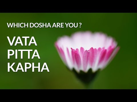 Which Ayurvedic Bodytype Are You ? (Vata Pitta Kapha)