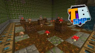 Finishing The One Chunk Starter Base! Cactus, Mushroom And Vine Farms! - Truly Bedrock - S02 EP06