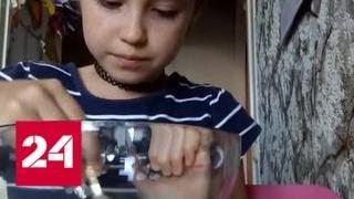 Трогательный ролик 10-летней блогерши набрал 1,5 миллиона просмотров за несколько дней - Россия 24