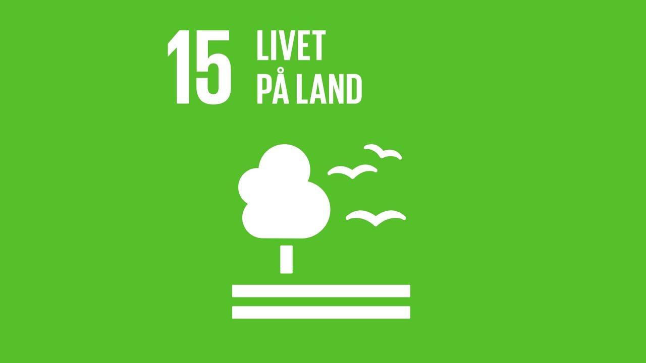 Mål 15: Livet på land | Verdensmålene - for bæredygtig udvikling