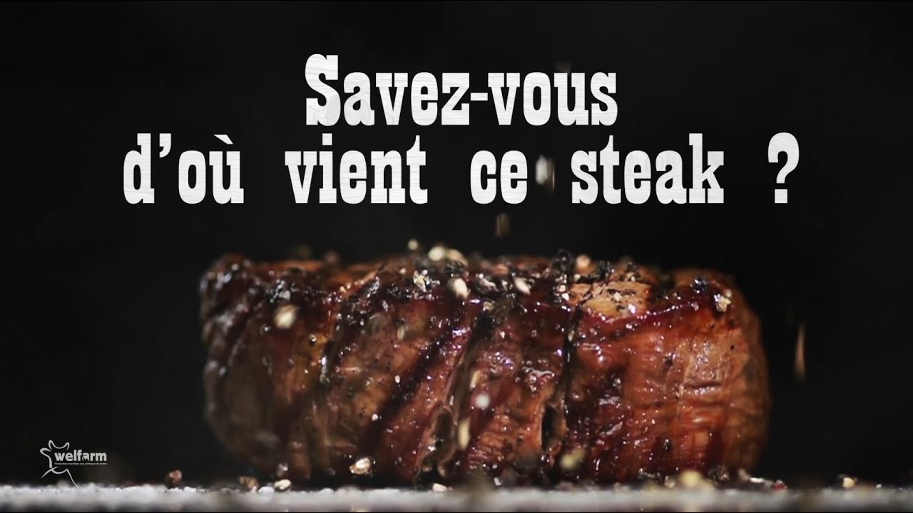 Que cache la viande chevaline vendue en France ?