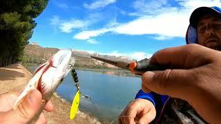 Рыбалка на реке Segre день второй прогулочный