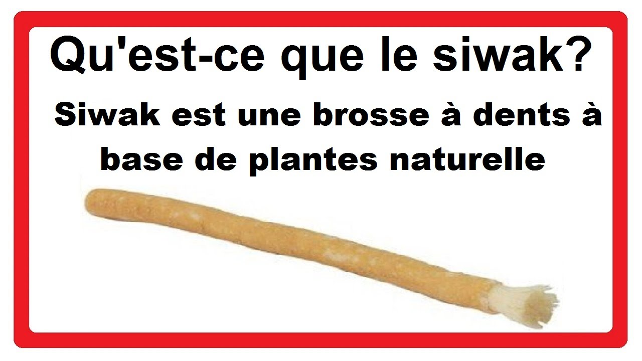 qu 39 est ce que le siwak siwak est une brosse dents base de plantes naturelle youtube. Black Bedroom Furniture Sets. Home Design Ideas