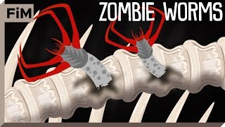 The Whale-Bone-Eating Zombie Worm