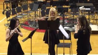 Flute Trio - Allegro & Menuetto.