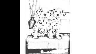 Auto Draw 2: Dalmatian Pair