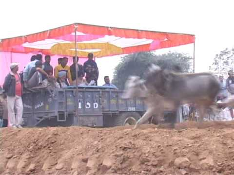 F1 FORCE INDIA OX BULL RACING PART 1 New Delhi 2011 watch out