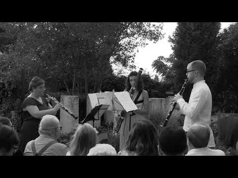 Roberto PINEDA TENOR - Tres Almas Viajeras