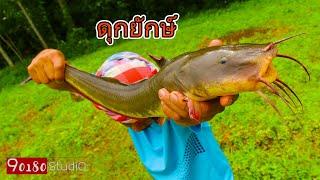 ดุกทะเลยักษ์ผัดเผ็ดกับข้าวพ่อกับข้าวแม่ปลามิหลังผัดเผ็ดสมุนไพรไทยรายการสยามเมืองยิ้มSiamSmile