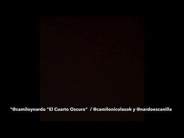 Elecciones: el divertido video de Camilo y Nardo en el cuarto oscuro ...