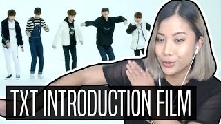 TXT 'Introduction Film - What do you do?' REACTION | 투모로우바이투게더
