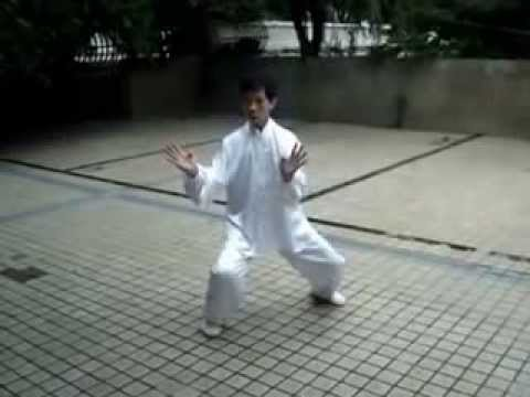 Master Lin Yuan Dun SanZhan