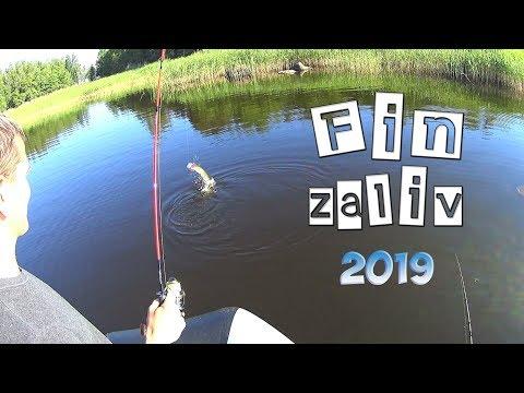 Рыбалка на Финском заливе 2019