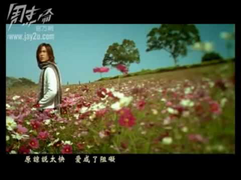 周杰倫 花海  高清版 Jay Chou Ocean of Flowers HD
