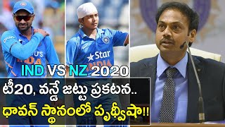 IND VS NZ 2020 : Team India Squad For T20Is & ODI,Samson,Shaw Replaces Injured Dhawan ! || Oneindia