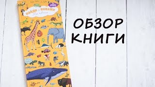 Смотрим с детьми: Найди и Покажи. Мир животных. Обзор детских книг.