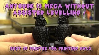 Anycubic i3 Mega Without Assisted Levelling / Best 3D Printer for Printing Owls