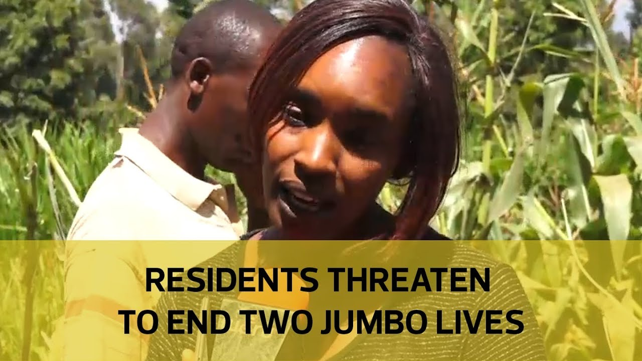 Residents threaten to end two jumbo lives