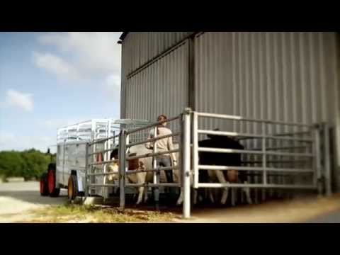 JOSKIN - Livestock trailers Betimax RDS