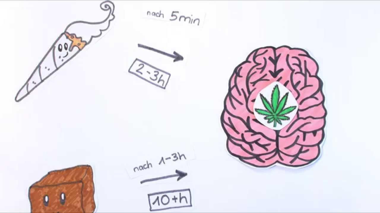 Cannabis - Was passiert in meinem Gehirn? - YouTube
