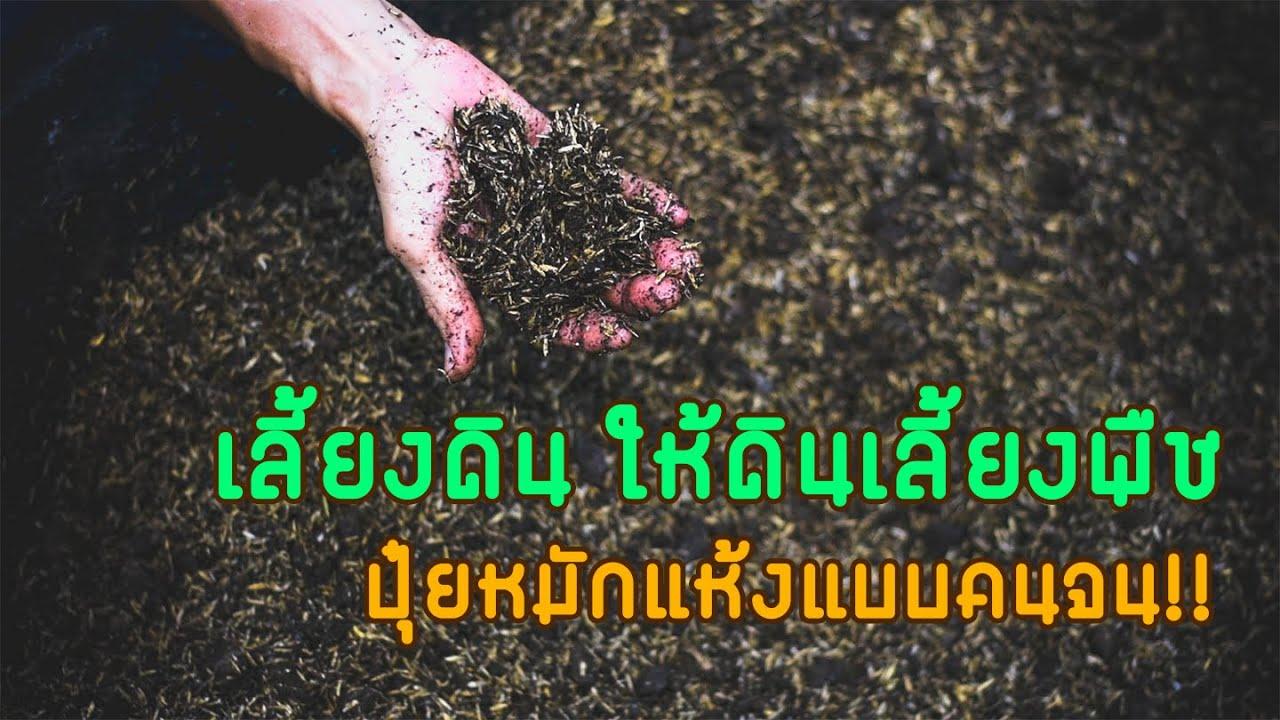 เลี้ยงดินให้ดินเลี้ยงพืช ปุ๋ยหมักแห้งแบบคนจน!!