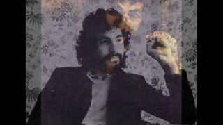Angelsea Cat Stevens