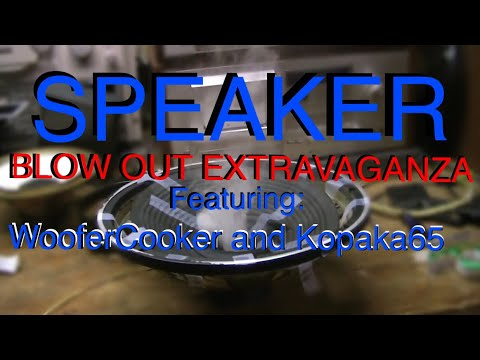Blowing Up Speakers With WooferCooker and Kopaka65