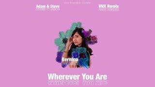 Adam & Steve - Wherever You Are (VNX Remix)