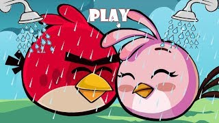 Angry Birds Take A Shower - TAKE EVERY SHOWER FROM PIGGIES FOR RED AND STELLA!