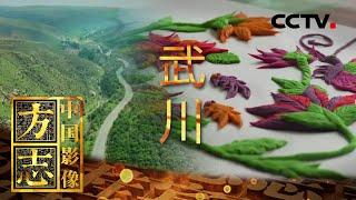 《中国影像方志》 第530集 内蒙古武川篇| CCTV科教