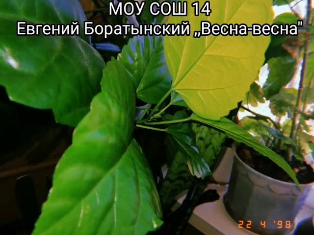 Изображение предпросмотра прочтения – ДианаВалиулина читает произведение «Весна! Весна! Как воздух чист...» Е.А.Баратынского