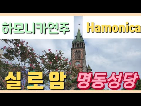 실로암(하모니카연주Gkey)명동성당 Siloam (Harmonica Performance Gkey) Myeongdong Cathedral Seoul