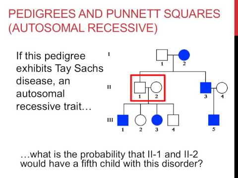 Solving pedigree genetics problems
