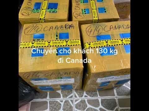 gửi hàng đi canada - Chuyển hoa Sáp 130 kg đi Canada