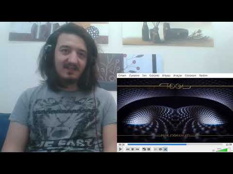 Tool - Descending (Instruments Are Wild) / REACTION!