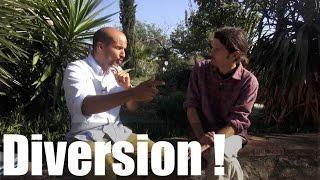 Diversion ! - Pierre Etchart / Thierry Casasnovas - www.regenere.org