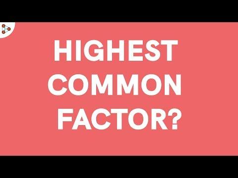HCF (Highest Common Factor) or GCD (Greatest Common Divisor) | Don't Memorise